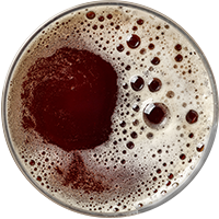 http://craft-beer.bold-themes.com/main-demo/wp-content/uploads/sites/3/2017/05/beer_transparent_02.png